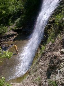 Standing in the middle of Albion Falls.