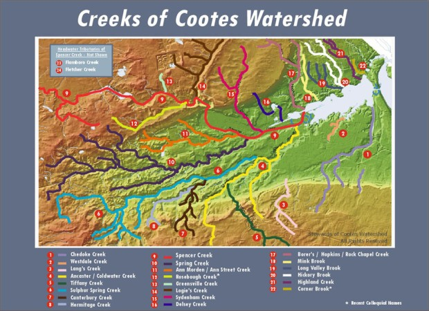 Creeks of Cootes Watershed