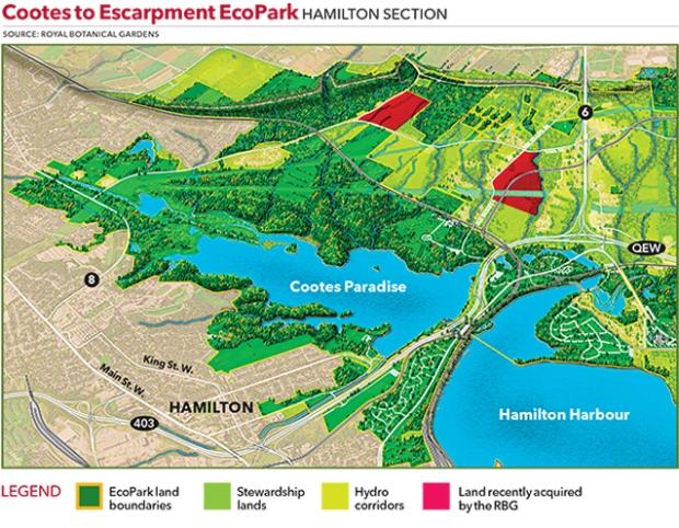 SPC-RBG-EcoPark-Hamilton.jpg