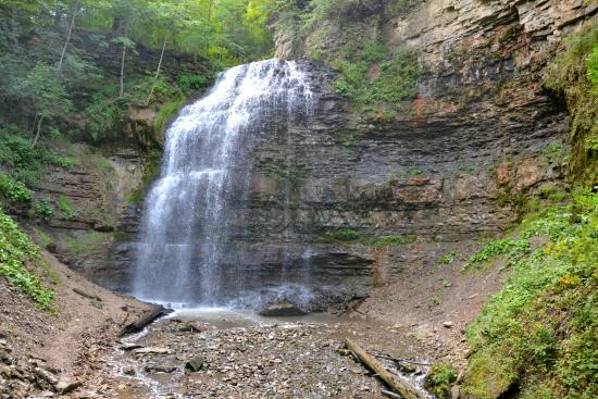 tiffany-falls-conservation